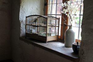 Gabbietta per uccelli: cinque voliere con vassoio estraibile