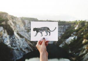 Stencil: come ottenere delle decorazioni uniche nei tuoi ambienti e sulle superfici più varie