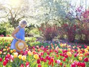 offerte primavera