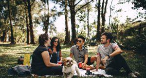 coperta picnic
