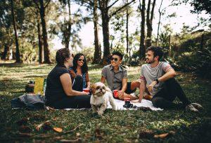 Coperta da picnic: l'accessorio indispensabile per una rilassante merenda all'aria aperta