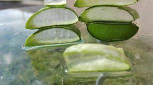 Aloe Vera da bere: cinque succhi dal gusto tutto da scoprire