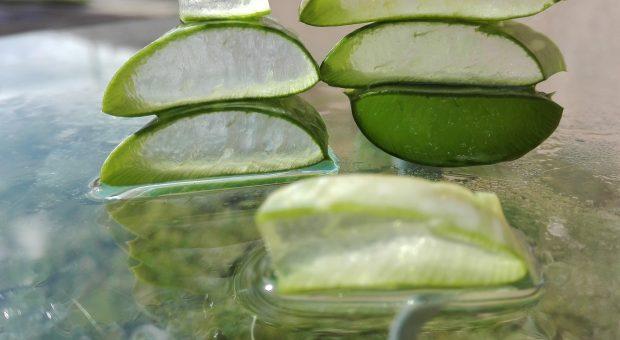 Aloe vera da bere: ecco 5 succhi da provare
